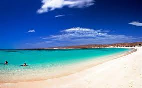 Ningaloo reef pic